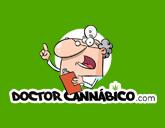 dr cannabico